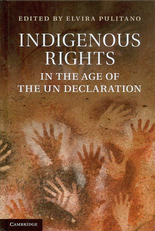 Indigenous rights in the age of the UN declaration /edited by Elvira Pulitano